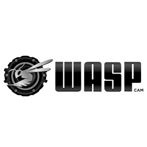 Wasp-Cam-2